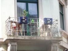 Alaunstraße - Balkon mit Bierkasten