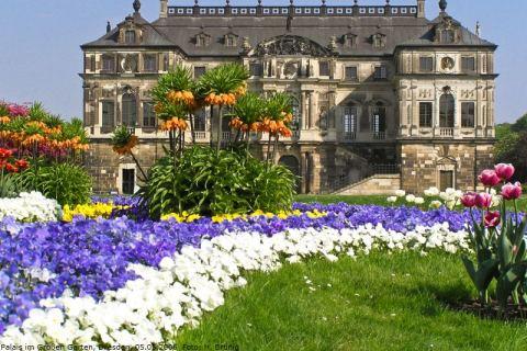 Dresdner Frühling Im Palais Im Großen Garten